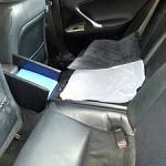 Lexus ISF custom interior Dogwalk