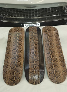 Snakeskin Skateboards